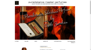 puredistance webdesign next buzz amersfoort