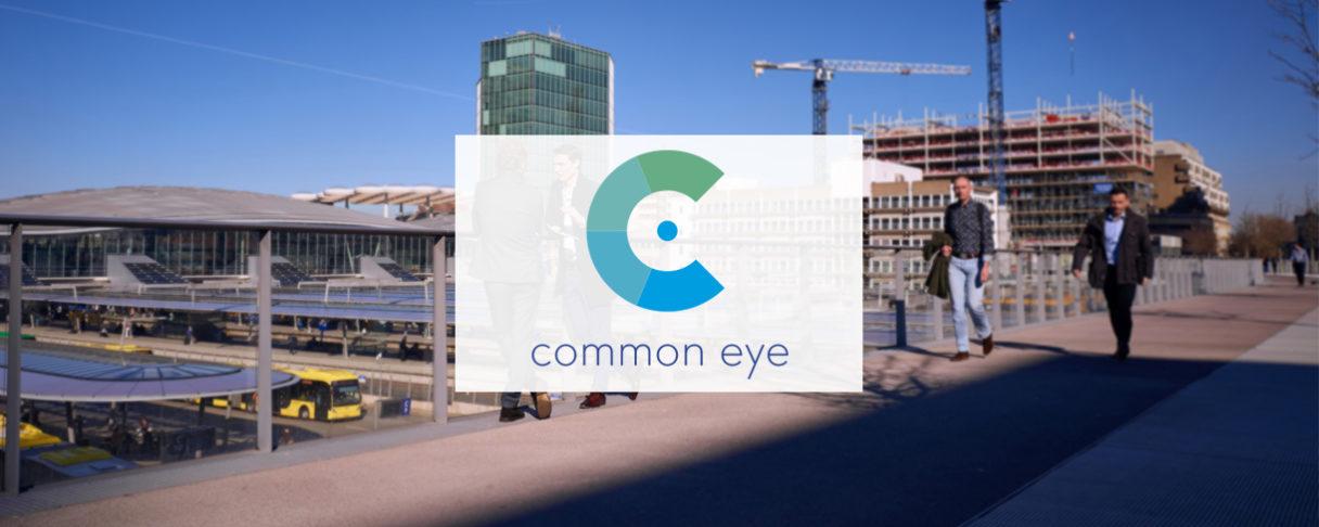 Common Eye
